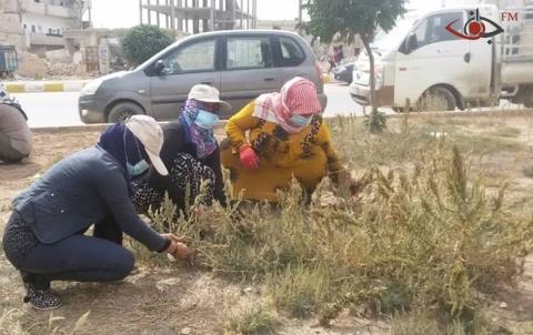 منظمة كونسيرن وبلدية كوباني تطلقان حملة